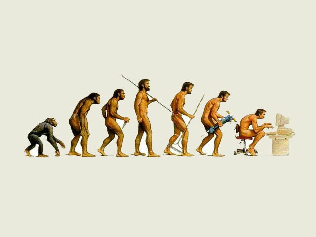 evolution seo hero